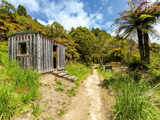 Cycling the Timber Trail Historic shelter No11 Camp_TimberTrailNZ.jpg